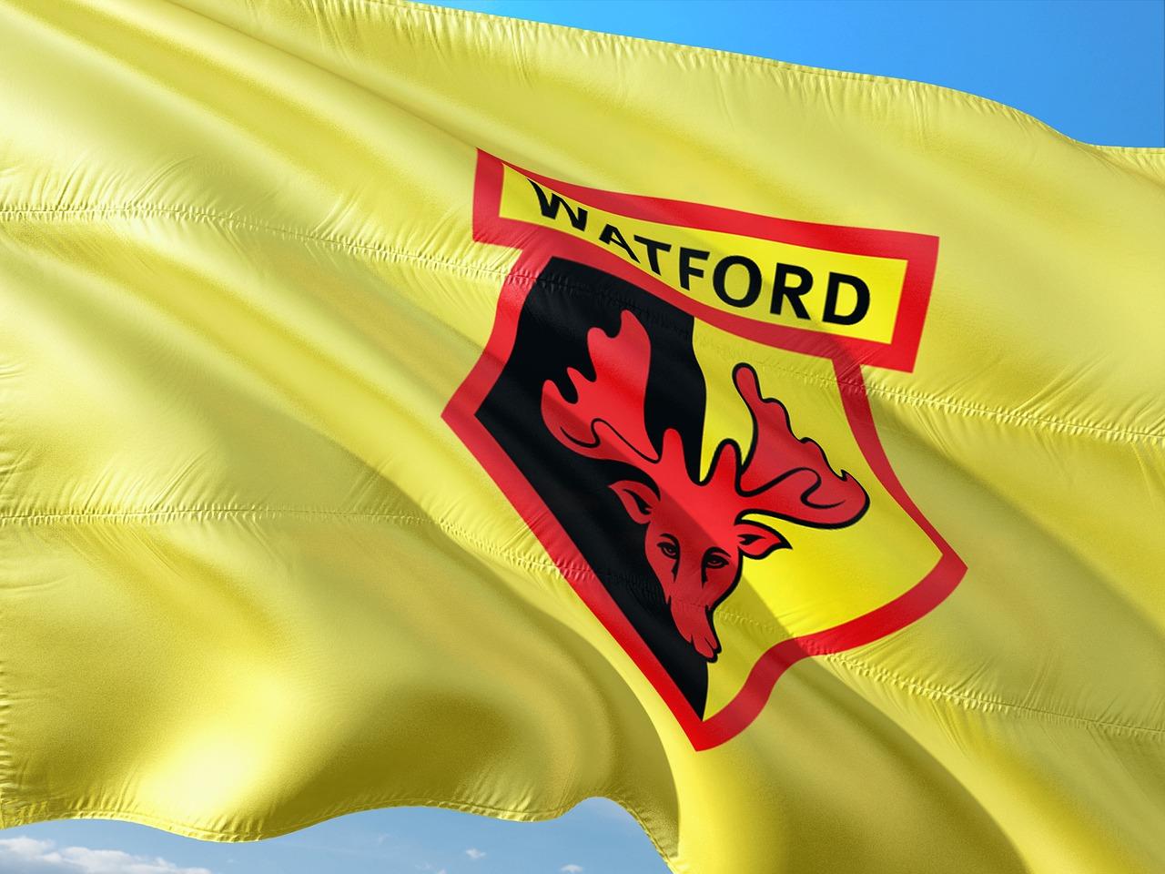 Watford_flag