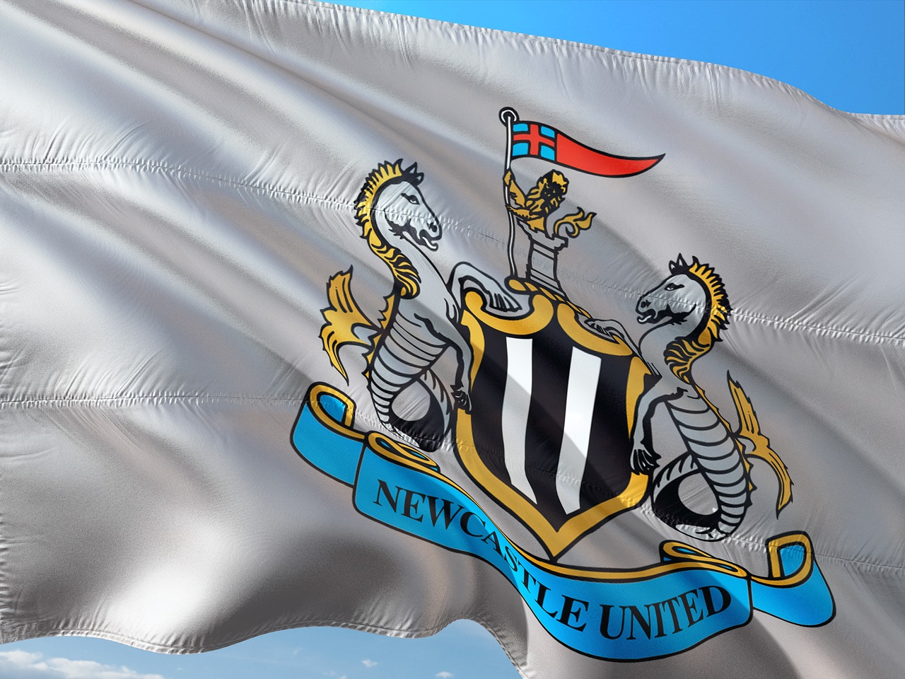Newcastle United - Flag